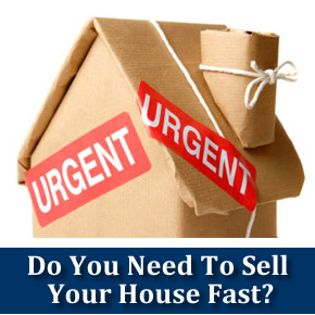 I Need To Sell My House Fast In Houston Market. Licensed Practical Nurse Cover Letters Template. Short Recommendation Letter For Employee Template. Perpetual Inventory System Example Template. Ms Access Warehouse Management Template. Management Objective Resume. Pay For Delete Letter Template. Deposit Receipt Template. Sales Associate Duties And Responsibilities Template